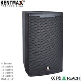 "OEM/ODM DJ Big Bass 12"" de altavoces de audio portátil Karaoke"