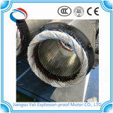 Il motore asincrono elettrico protetto contro le esplosioni di CA Ye3 con personalizza la tensione