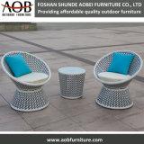 حديثة جديدة تصميم حديقة أريكة كرسي تثبيت [رتّن] أثاث لازم مجموعة