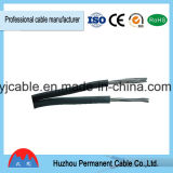 Calidad confiable de núcleo único cable eléctrico y BV Precio Cable