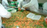 2017 vegetais misturados congelados IQF com alta qualidade