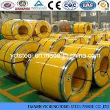 bobines anti-caloriques de l'acier inoxydable 310S