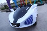 De elektro het Rennen van de Batterij Auto van het Stuk speelgoed, de Gegoten Auto van de Baby Matrijs