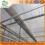 Invernadero Comercial de Vidrio Agrícola Multi-Span