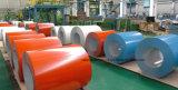 Il vasto uso di colore ha ricoperto la bobina d'acciaio galvanizzata