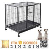 Preiswerter quadratischer Gefäß-Hundeträger