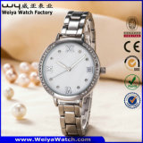 Montre-bracelet en acier inoxydable OEM du Japon circulation Mesdames Watch (WY-P17002A)
