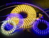 Colore blu per la corda Lgiht di tensione di Hight di alta luminosità di The110V/220V