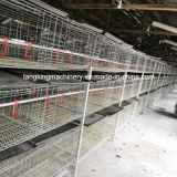 Faible prix de haute qualité du système de la cage de poulets de chair