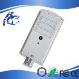 지능 공장 판매 LED 가로등 1개의 태양 LED 가로등에서 모두