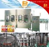 Automatisches Glasflaschen-Saft-Getränkeabfüllender Maschinerie-Produktionszweig