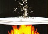 De Brand met hoge weerstand schatte Geschuurde MGO Raad