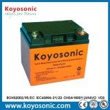 bateria profunda do AGM da bateria do ciclo de 12V 45ah com garantia de 3 anos