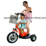 2018 Cheap Electric Tricycle Electrical Mobility Scooter with Factory Price