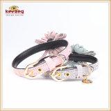 2개의 색깔 작은꽃 애완 동물 공급 고양이 개 목걸이 Kc0175