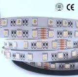 De hoogste Kleuren van Dimmable RGBW Vier van de Strook van de Verkoop Kleurrijke Lichte in Één LEIDENE Strook