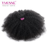 4C Afro Kinky Curly Cabello Humano tejer cabello virgen