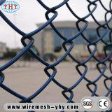 カラーによって塗られる境界線はネットを保護する