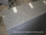 Poliergraue Treppe des Granit-G603 für Jobstepp/Aufbruch