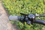 الصين [هوتسلّ] كهربائيّة درّاجة دهن