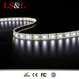 Striplight 60LEDs/M di 5050SMD LED per illuminazione decorativa
