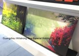 Panneau composé en aluminium UV de Digitals Pringting pour la décoration à la maison
