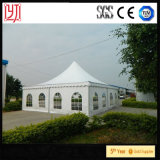 10X10 outdoor Advertizing Tent Fireproof Tent for Car Show