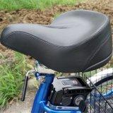 La carga de 24 pulgadas triciclo eléctrico para la venta con la función de giro