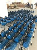 Portable chaud de pulvérisateur de peinture de la vente 2200W St-795 de Scentury