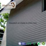Voie de garage composée extérieure moderne et panneau de mur de WPC (WP03)