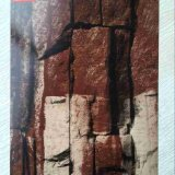 Motif imprimé couleur pierre étanches en acier galvanisé pour revêtement de mur extérieur de la bobine