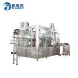 Usine remplissante de machine de production de jus de fruits de bouteille d'animal familier à vendre