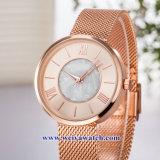Produtos OEM personalizados Senhoras Quartz Relógios sabia, Senhora vele liga (WY-17040)