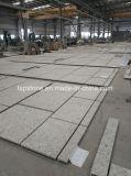 Construction를 위한 석영 Stone 또는 Marble/Granite Wall Cladding