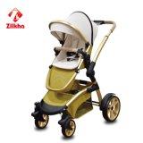 Baby-Spaziergänger mit Rahmen + regelmäßiger Sitz