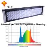 Arrefecimento por líquido hidroponia fábrica de iluminação LED das luzes de pé