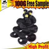 Cheveu noir brésilien de gicleur des prix raisonnables