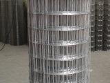 T 304|Maschendraht des Edelstahl-316 mit 30m Rollenlänge für das Sieben
