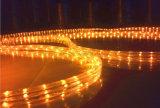 Indicatore luminoso al neon della flessione della decorazione dei 3 collegare LED della striscia piana esterna della corda