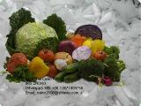 Las frutas y hortalizas flake ice la maquinaria de refrigeración/.