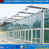 Glasdeckel-materielles Gewächshaus für Gurke