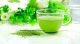 自然なSuperfoodの緑のオオムギ草の粉
