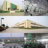 alta calidad profesional del generador de la gasolina 5000W