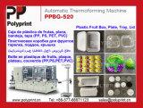 Máquina de Thermoforming de la tapa de la taza de los PP