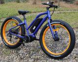 중간 모터를 가진 8fun 전기 자전거