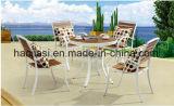 屋外の/Rattan/庭は/テラス/ホテルの家具のPolywood椅子及び表セットした(HS 3025C及びHS 6128DT)