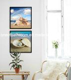 شاطئ بحر قشرة قذيفة صور لأنّ جدار زخرفة