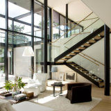 Placa de acero de bajo coste Stringer directamente de la escalera de vidrio con barandilla de cristal templado sin cerco para un proyecto residencial