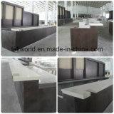Compteur à extrémité élevé de luxe de marbre artificiel de barre