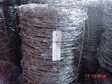 Hotsales оцинкованной или ПВХ колючей проволоки стальной проволоки
